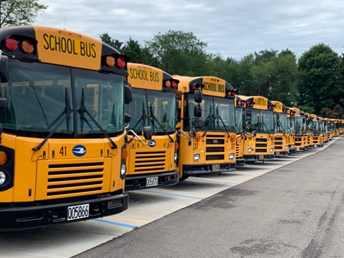 SCHOOL BUSES IN THE LOT